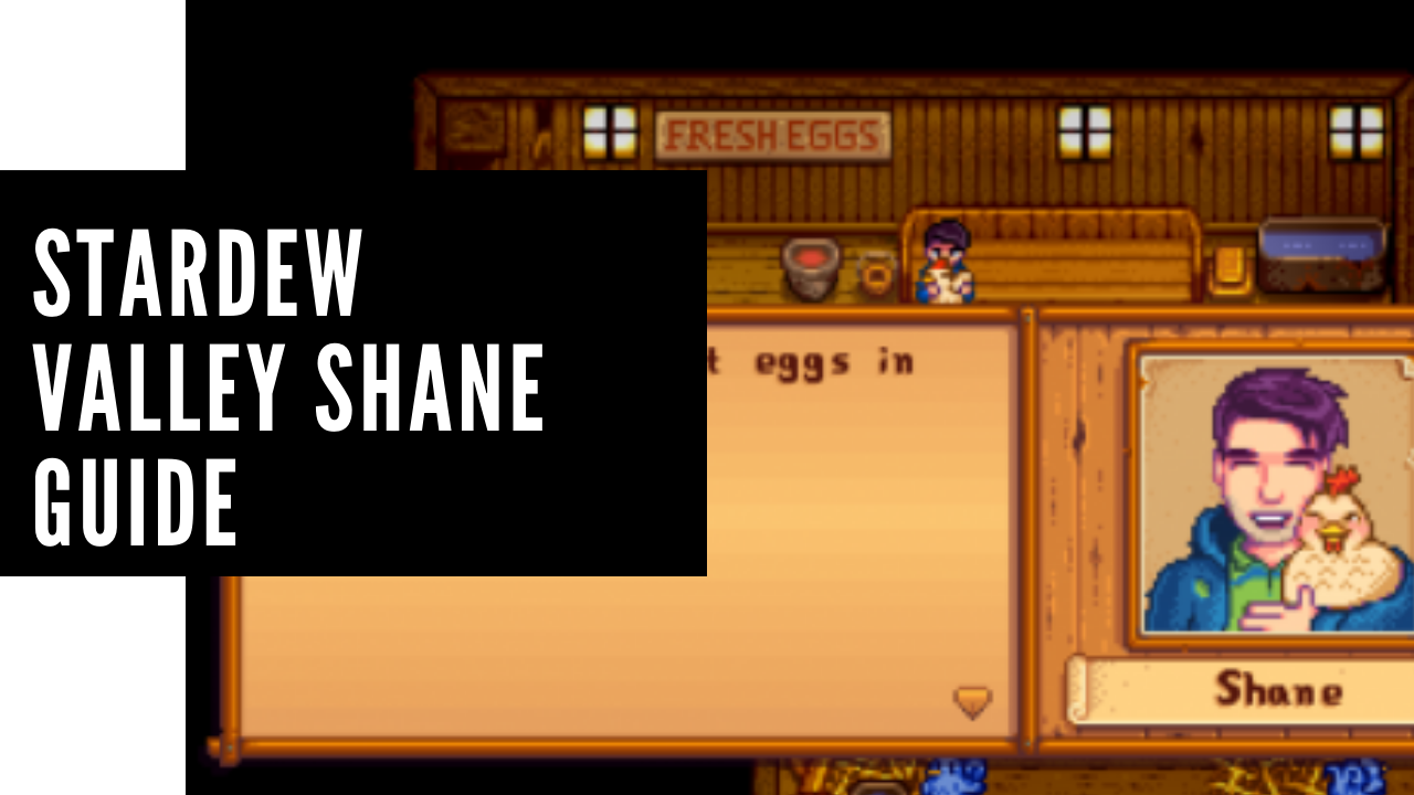 Shane Stardew valley Guide