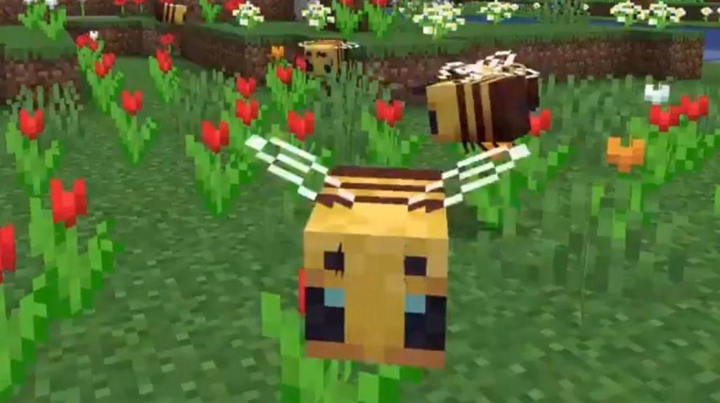 raise honey bee in Minecraft