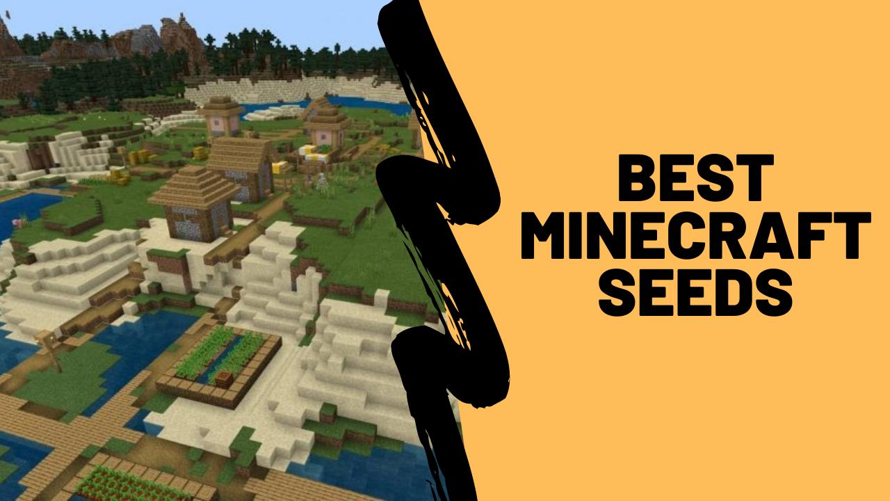Best minecraft seed