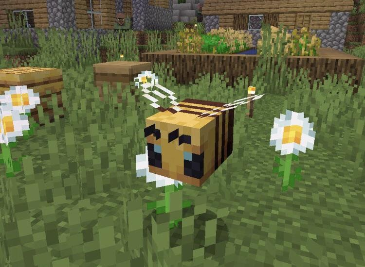 Discover honey bee in minecraft